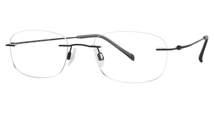 689f6a0c51 Get Free Shipping on Charmant Pure Titanium Eyeglasses TI 8334E